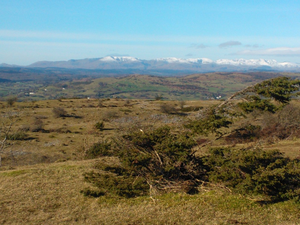 View of Lakeland fells