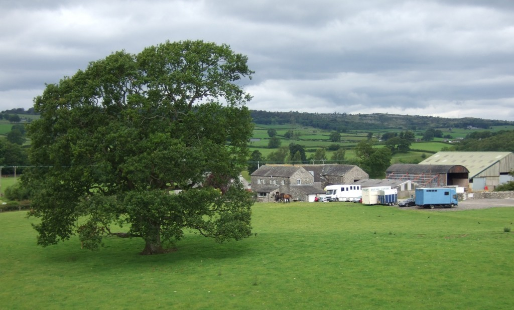 Larkrigg fields and farms