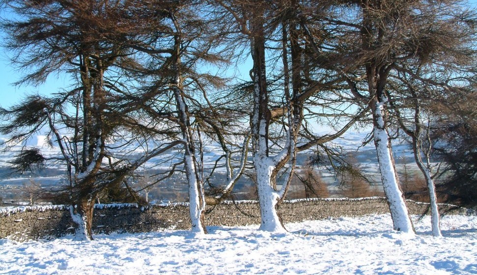 Winter on Helsington Barrows