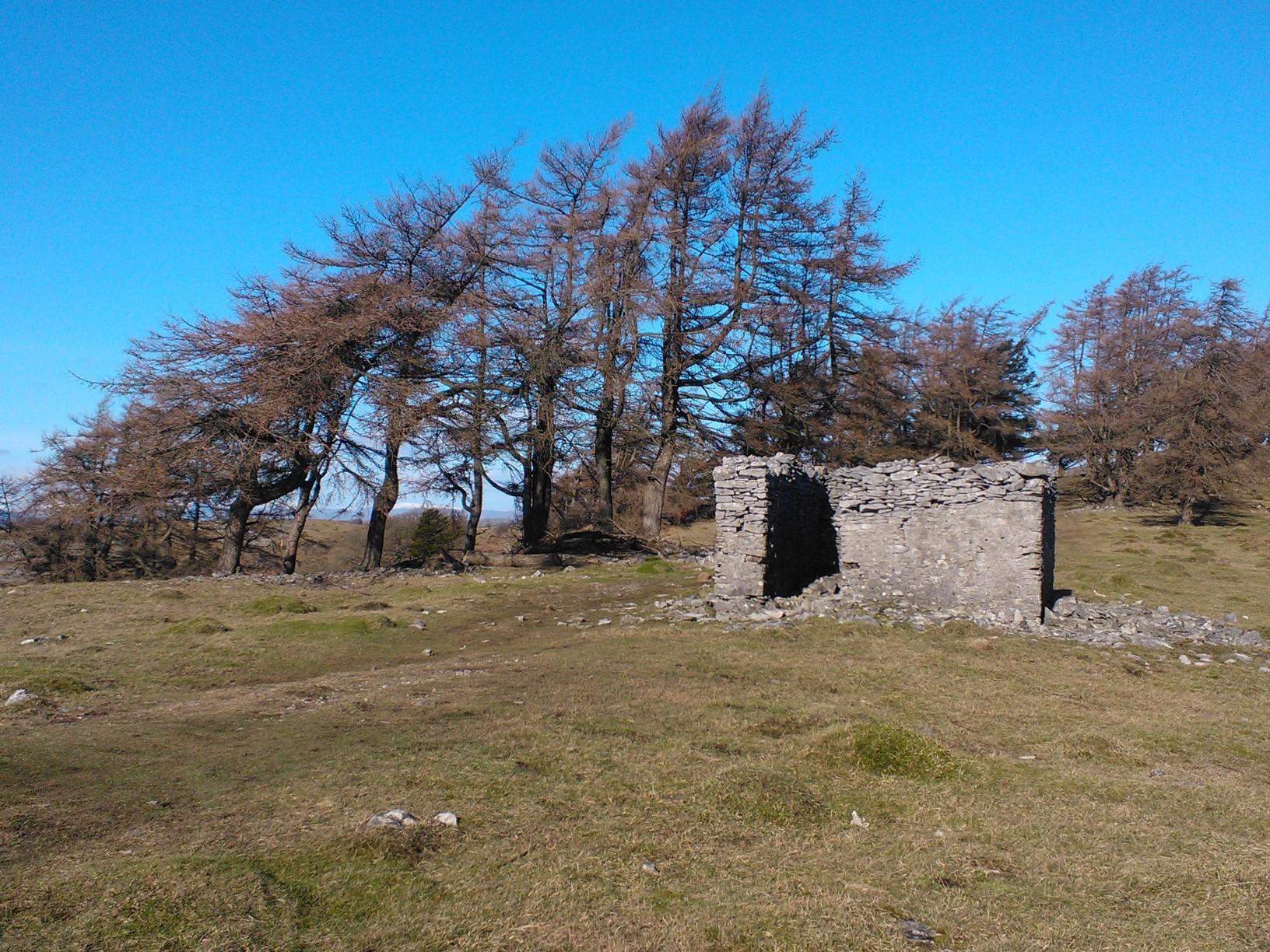 Helsington Barrows Hut Ruin
