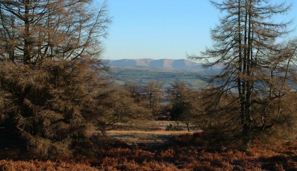 View from Helsington Barrows